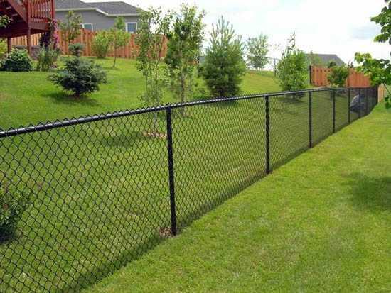 Забор какой лучше сделать – Какой забор обойдется вам дешевле ...